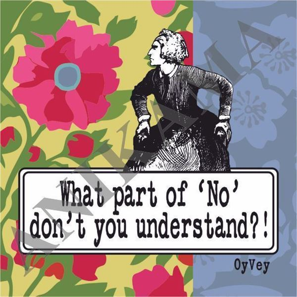 תמונה של What part of no don't you understand Magnet