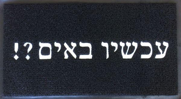 תמונה של שטיח כניסה